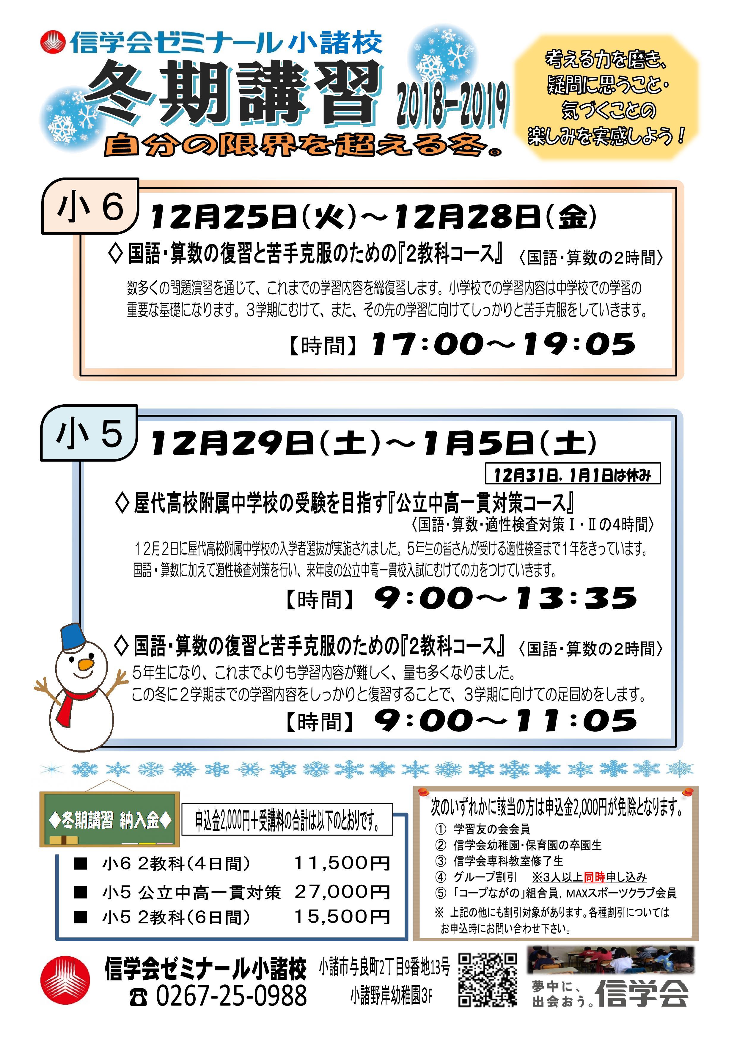 H30冬期講習チラシ(小5・6)